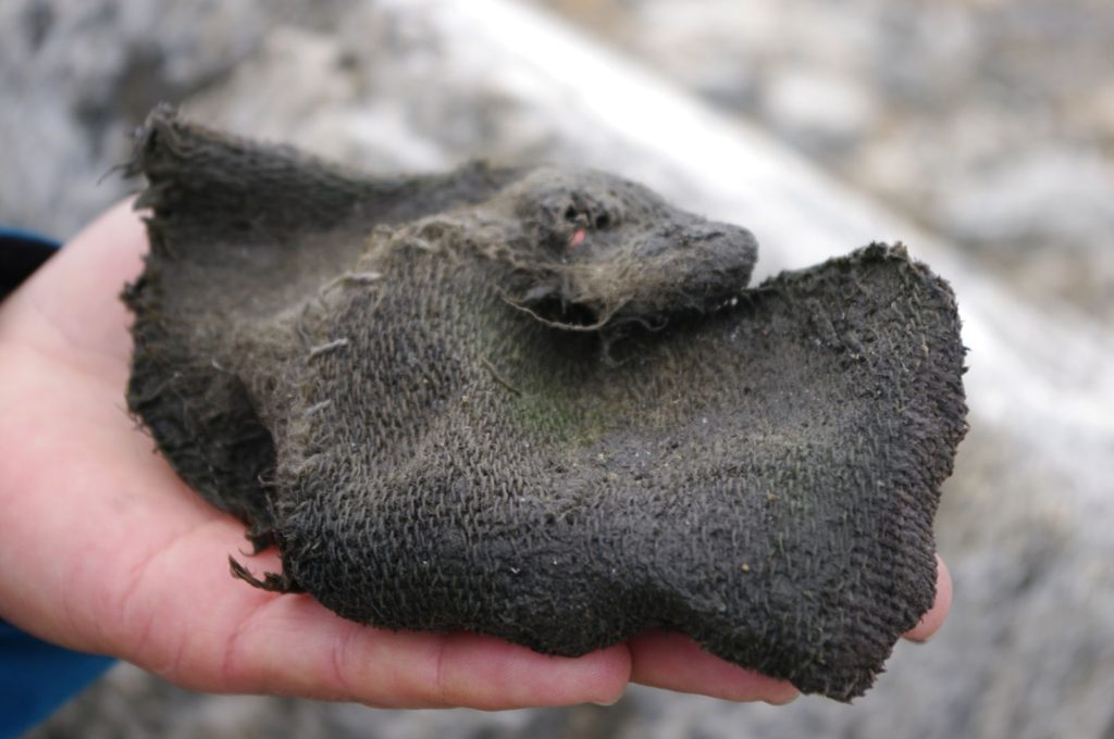 A Viking Age mitten
